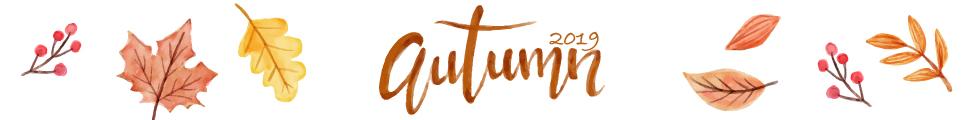 秋の実りの財布特集